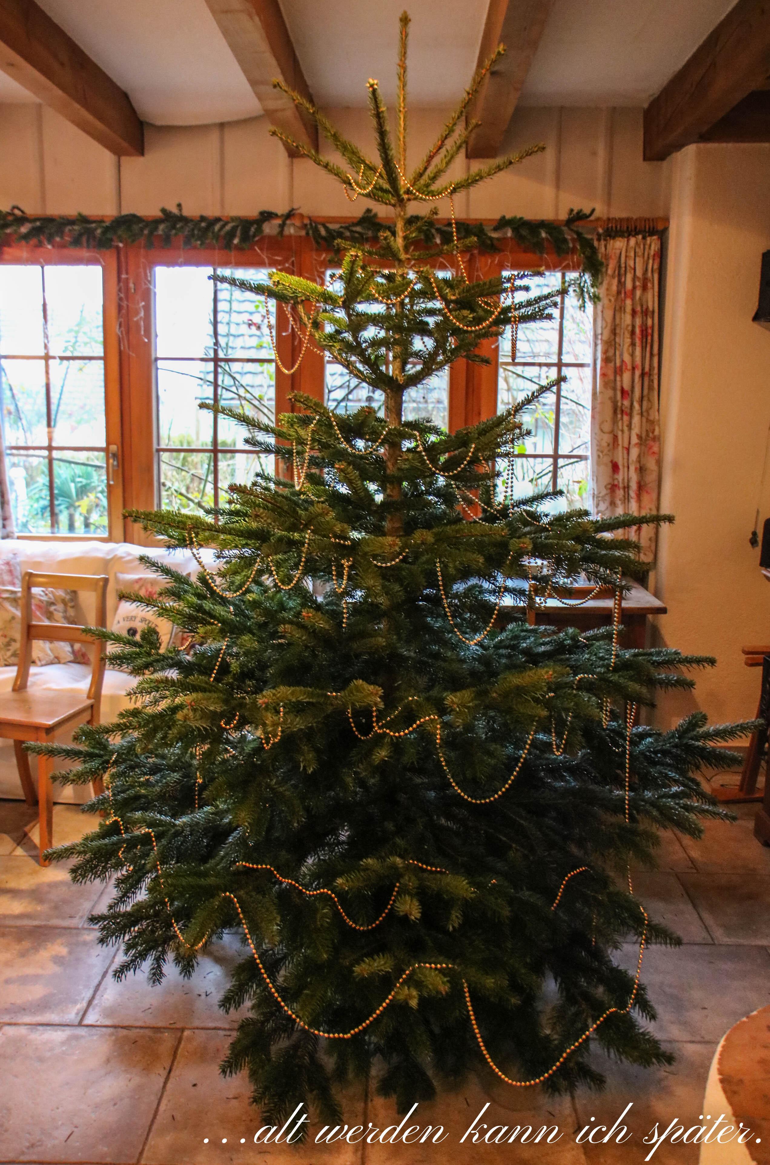 Dekorieren alt werden kann ich sp ter - Pinterest weihnachtsdeko ...