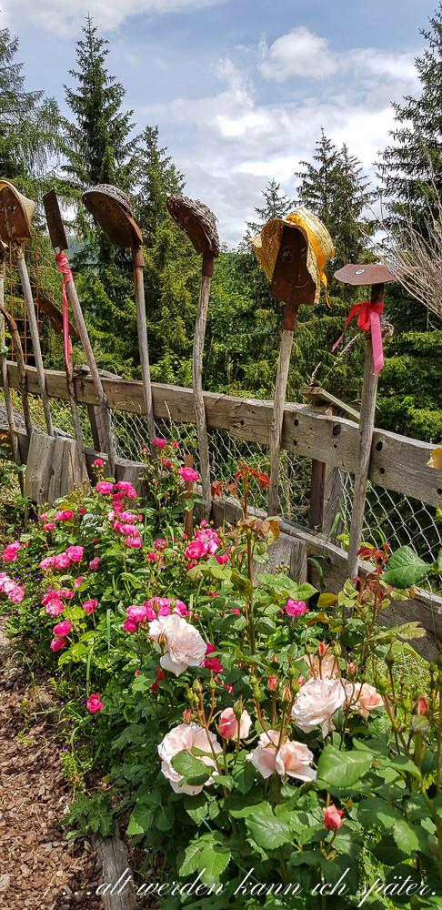 rosarium im val gardena alt werden kann ich sp ter. Black Bedroom Furniture Sets. Home Design Ideas